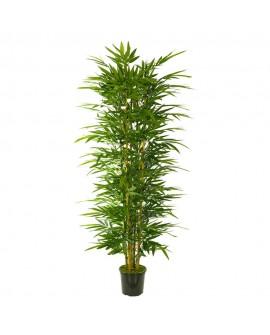 Árbol bambú para exterior